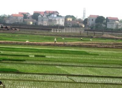 Nghiên cứu giải pháp giảm nhẹ phát thải khí nhà kính đối với ngành nông nghiệp