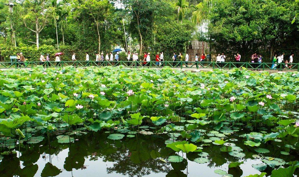 Làng Sen quê Bác: Quê hương chung của người dân đất Việt