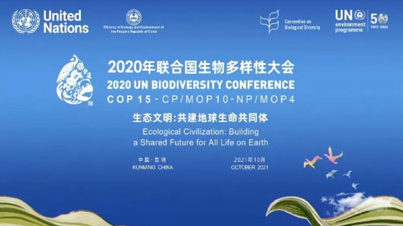 Thông tin về hội nghị lần thứ 15 các bên tham gia Công ước Đa dạng sinh học (CBD COP 15)