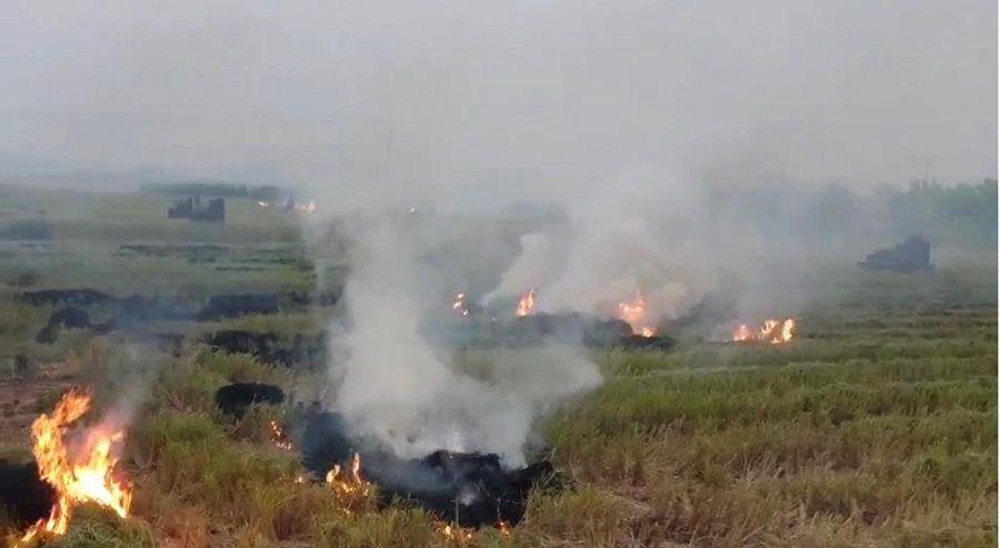 Hà Nội khó xử lý đốt rơm rạ tại các huyện ngoại thành