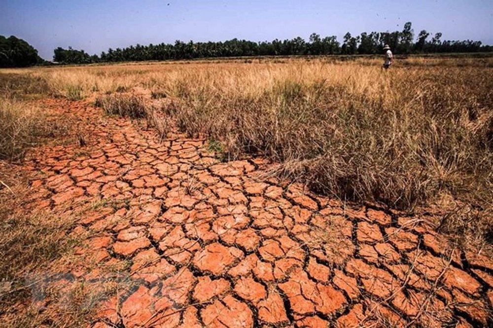 Lý giải nguyên nhân về đợt hạn mặn tại Đồng bằng sông Cửu Long trong mùa khô năm 2019 - 2020