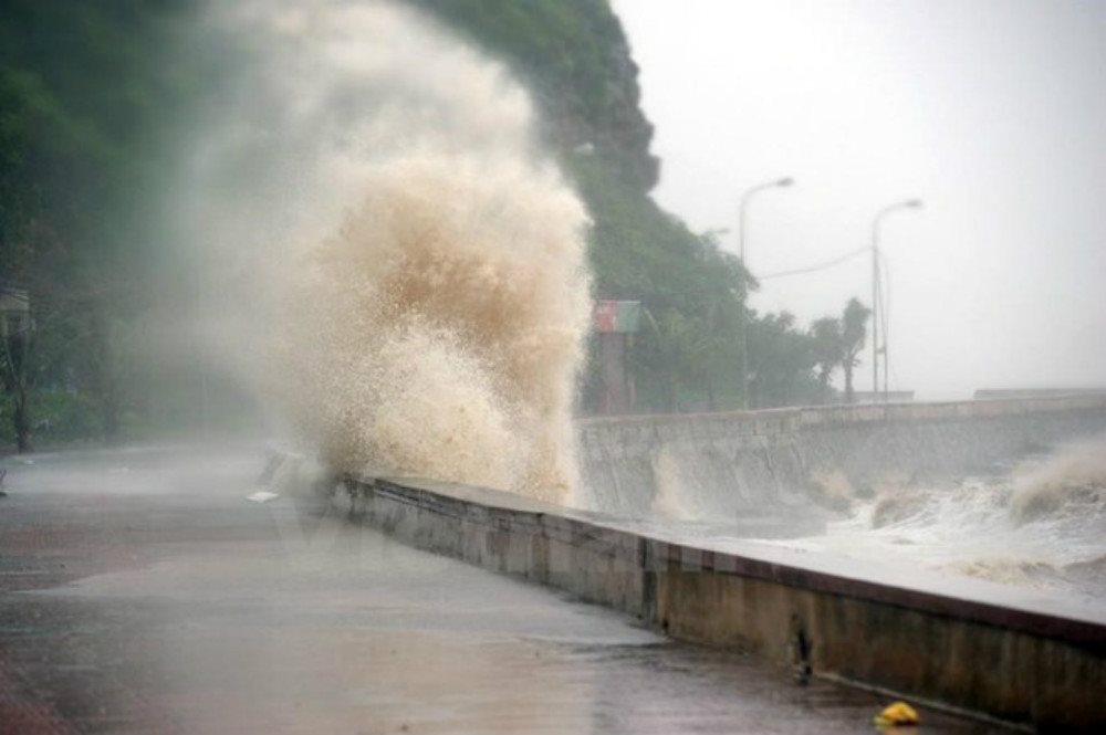Mùa mưa bão 2020: Các tỉnh ven biển cảnh giác hiện tượng nước dâng do bão